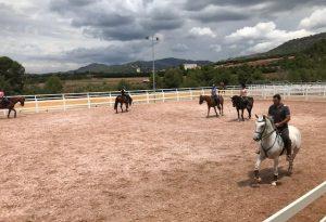 pupilaje de caballos Valencia
